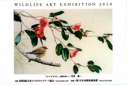 2010wildlifeart (Small).jpg